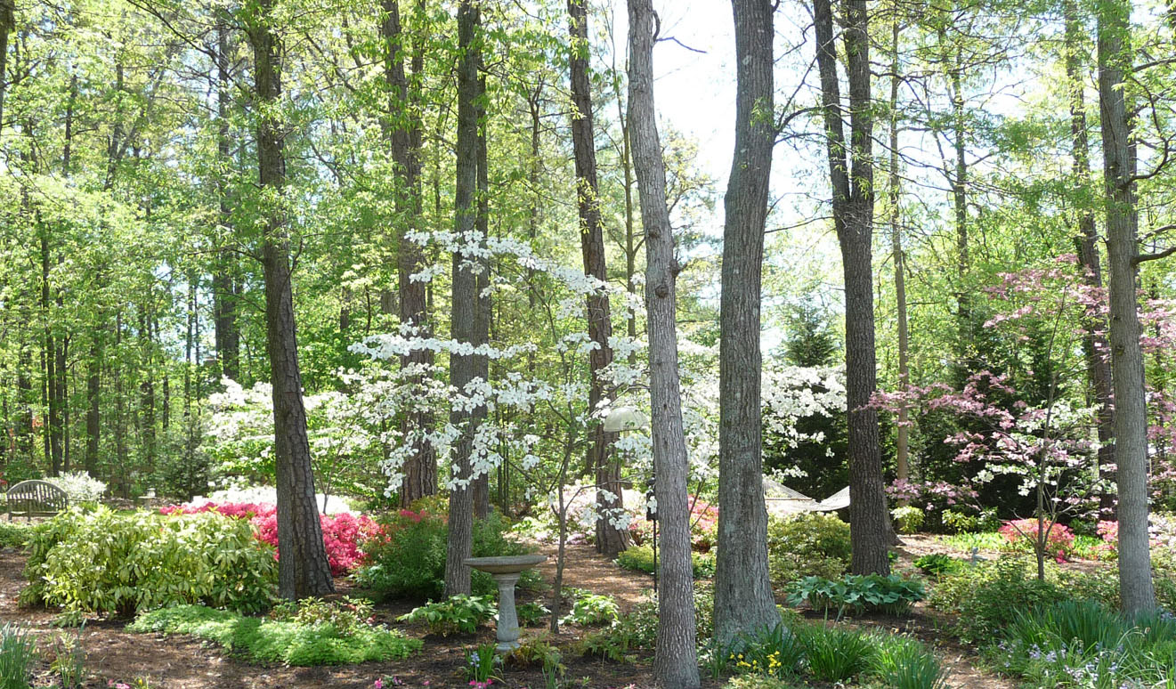Richmond VA Landscape Designer: Gardens by Monit, LLC: Monit Rosendale landscape designer Richmond and Charlottesville Virginia and Fredericksburg Virginia and Williamsburg Virginia